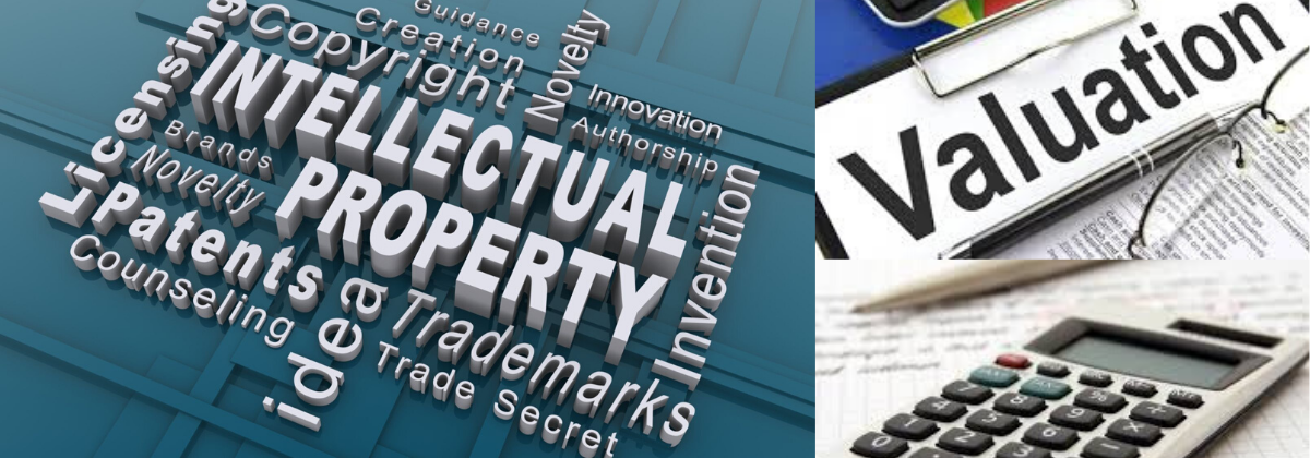 Distinguishing Intellectual Property Valuation (Ipv) From Other Company Assets In Mergers And Acquisitions